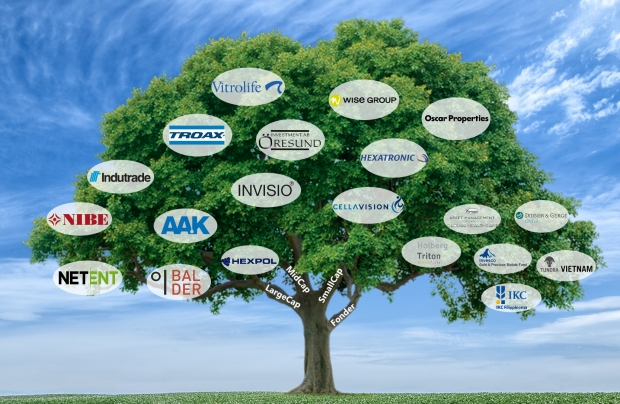 portfolio-tree-sky