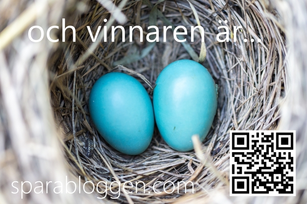 avian-bird-nest-birth-158734